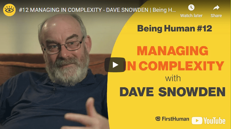 MANAGING IN COMPLEXITY – AN INTERVIEW WITH PROF. DAVE SNOWDEN
