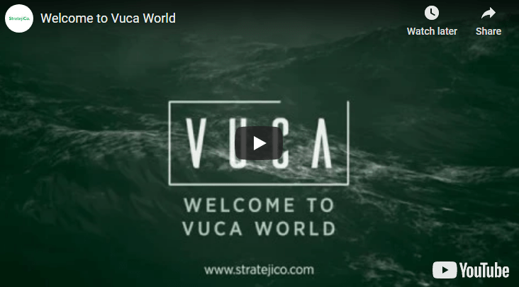 The VUCA world
